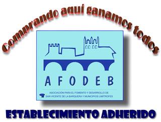 Campaña de Navidad 2014 - AFODEB
